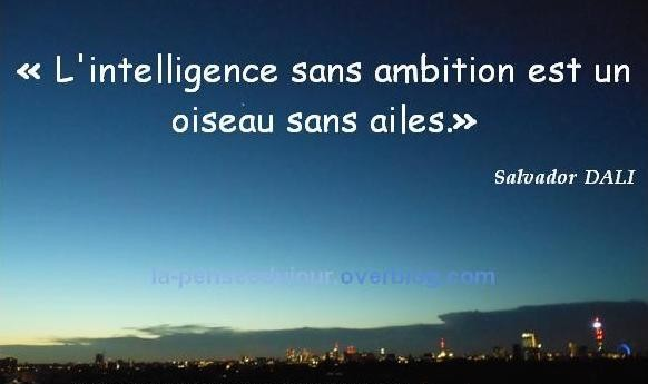 L intelligence sans ambition