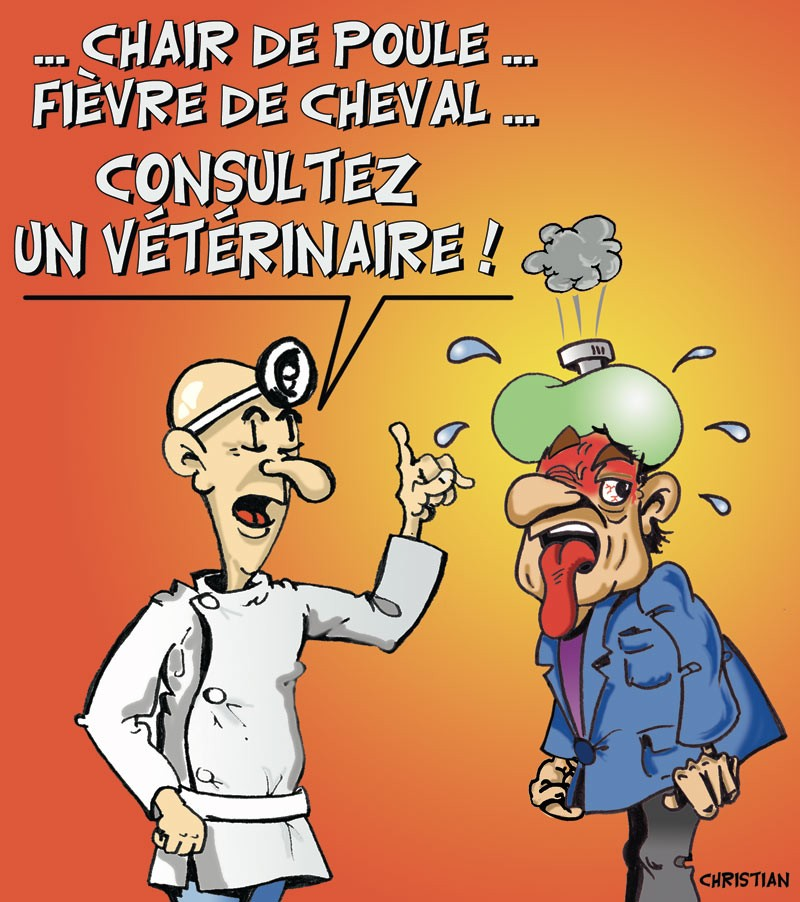 veterinaire-web.jpg